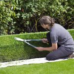 box-hedge-topiary-869073_960_720